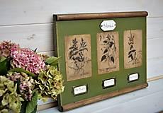 Obrázky - Botanický obrázok zo starého kabinetu v zelenom II. - 10998327_