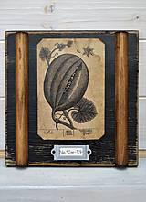 Malé botanické obrázky zo starého kabinetu - zelenina (Dyňa)
