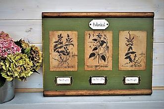 Obrázky - Botanický obrázok zo starého kabinetu v zelenom II. - 10998321_