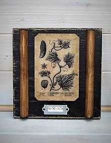 Obrázky - Malé botanické obrázky zo starého kabinetu - zelenina (Uhorka) - 10998368_