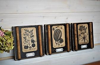 Obrázky - Malé botanické obrázky zo starého kabinetu - zelenina - 10998416_