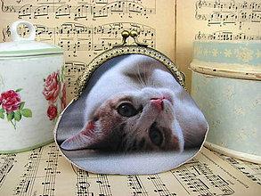 Taštičky - Malé kotě - taštička - 11001057_