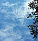 Fotografie - V oblakoch - 11003624_