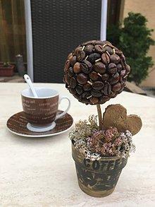 Dekorácie - Kávovník zo ❤️srdiečkom - 11008375_