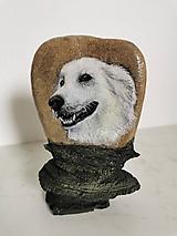 Obrazy - Portrét vášho domáceho miláčika na kameni - 11006843_