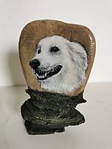 Obrazy - Portrét vášho domáceho miláčika na kameni - 11006851_