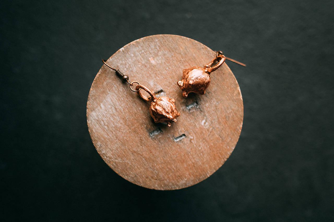 Náušnice tuja východná - plod