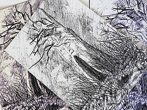 Kresby - Starý strom - A6 print (pohľadnica) - 11015271_