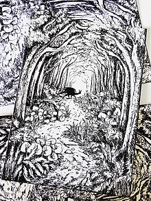 Kresby - Lesná cestička - A6 print (pohľadnica) - 11015281_