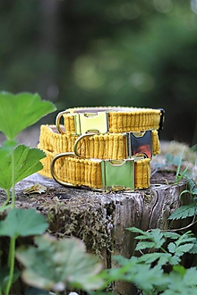 Pre zvieratká - Honey Mustard - 11017748_