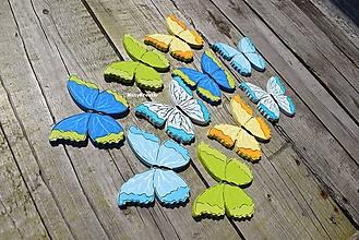 Magnetky - motýle...1 - 11019377_