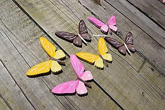 Detské doplnky - motýle...4 - 11019444_