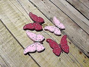 Magnetky - motýle...6 - 11019449_