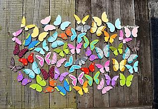 Detské doplnky - mix motýlov - 11019470_