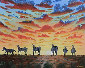 Obrazy - Zebry pri západe slnka - 11020589_