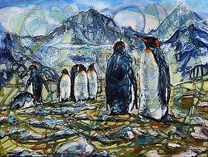 Obrazy - Kráľovstvo  tučniakov - 11024031_