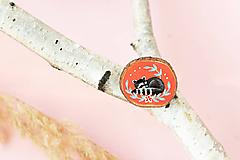 Odznaky/Brošne - Ručně malovaná brož se spícím mývalem - 11029284_