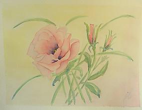 Obrazy - Anemonky, akvarel - 11031908_