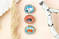 Odznaky/Brošne - Ručně malovaná brož se spící polární liškou - 11032877_