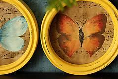 Rámiky - Set 4 dekoračných rámikov - Motýlie krídla - 11035781_