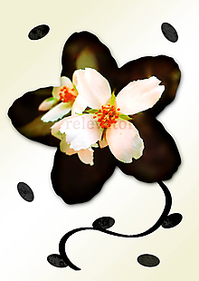 Grafika - Kvety v kvete ((ne)nápadné) - 11034969_