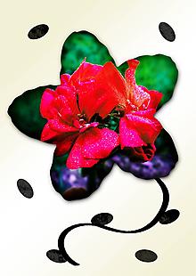 Grafika - Kvety v kvete (malinový oheň) - 11034987_
