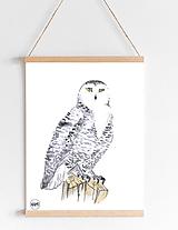 Art Print - snežná sova