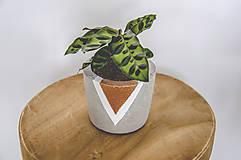 Nádoby - Maľovaný betónový kvetináč - 11050666_