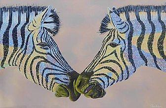 Obrazy - Zaľúbené zebry - 11057699_