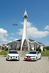Iné doplnky - Výzdoba na svadobné auto PERY a MOTÝLIK - 11059331_