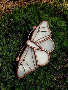 Odznaky/Brošne - Motýlia brošňa (Biela) - 11068039_