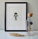 Kresby - Moucha černobílá - vel. A3 - 11078235_