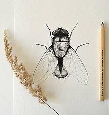 Kresby - Moucha černobílá - ve. A4 - 11078230_