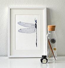 Kresby - Vážka v modrém - vel. A3 - 11078275_