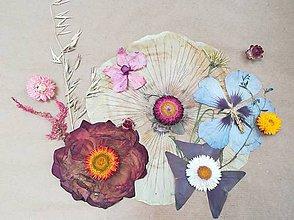 Obrazy - Obraz bez rámu z lisovaných a sušených kvetov - 11081246_