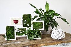 Obrázky - Machový multirámik so stabilizovanými kvety a srdiečkom ♥ - 11080784_