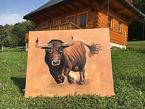 Obrazy - býk 3,   100x 80 cm - 11085772_