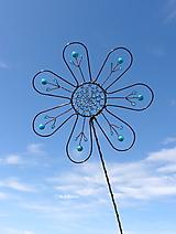 Dekorácie - kvet...modráčik obyčajný...zápich - 11086455_