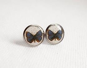 Náušnice - Živicové náušnice - Modrý motýľ (chirur.oceľ) - 11086949_