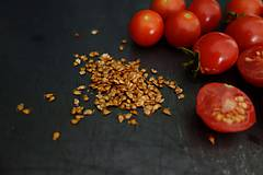 Potraviny - domáce semienka rajčín cherry 2018- 60ks v balení- ZĽAVA - 11089369_