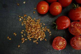 Potraviny - domáce semienka rajčín cherry 2018- 60ks v balení - 11089372_