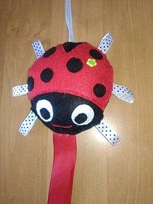 Detské doplnky - Sponkovník - labuť, kvet, lienka, sloník, jednorožec, medúza, mráčik,sova, mačka,korunka pre princeznú, žirafka, srdce (Sponkovník - lienka) - 11090620_