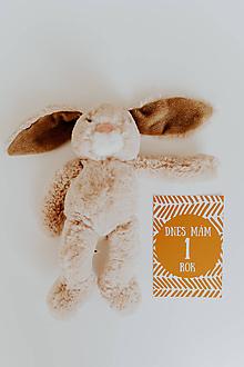 Detské doplnky - Míľnikové kartičky WOOD - 11094688_