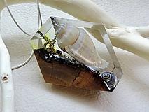 Náhrdelníky - Mušľa- Elegantný drevený nahrdelník so striebornou retiazkou - 11093889_