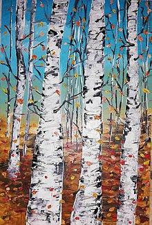 Obrazy - Jesenné brezy - 11092788_
