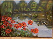 Obrazy - Maky okolo rieky - 11096550_