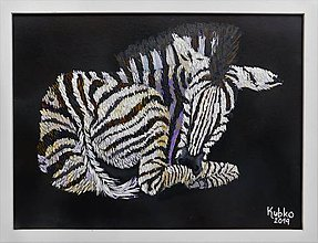 Obrazy - 10. Zebra - 11097956_