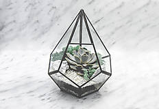 Nádoby - Vitrážové rastlinné terárium so sukulentom - 11102423_