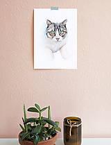 Obrazy - Portrét na želanie- akvarelový portrét mačky - A4 - 11103003_