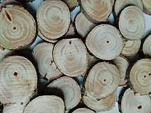 Polotovary - Drevené plátky - tuja - priemer cca 3 cm - 11109249_